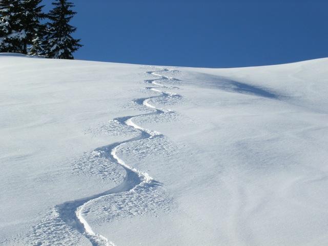 Ski-Spuren im Tiefschnee