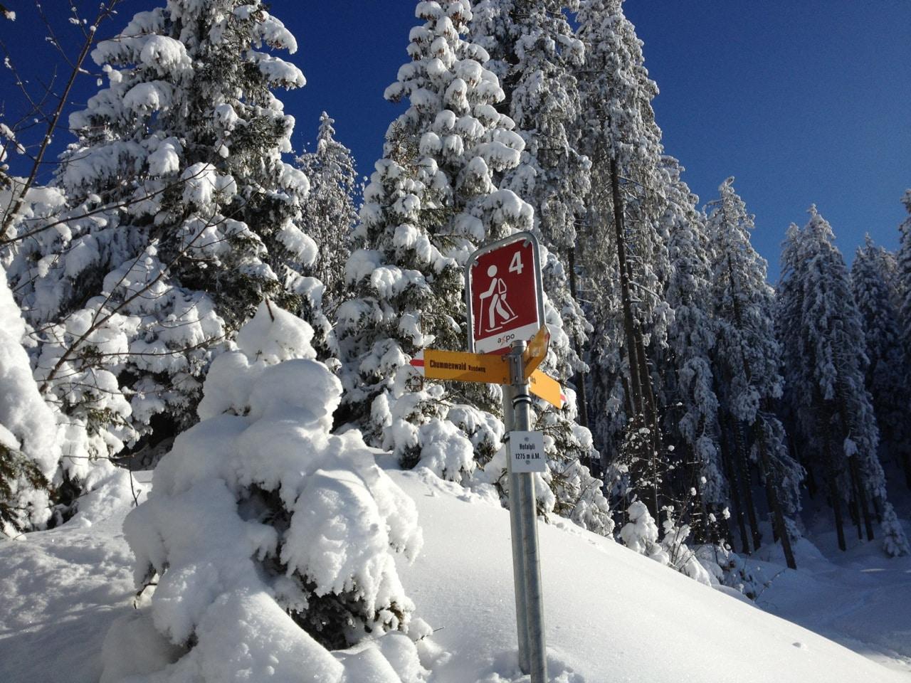 Schneeschuh- und Winterwanderweg Fronalp
