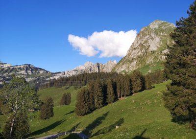 Fronalpstock und Mullern